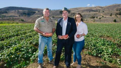 Lockyer Valley farming group to benefit from Woolworths Organic Growth Fund